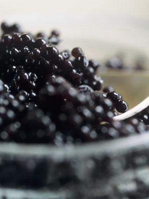 caviar ingrédient beauté