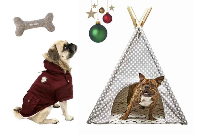 e4d1786b-a43e-4e2f-ac15-e7533df64bd2-noel-2016-idees-cadeaux-pour-animaux-de-compagnie-jpg