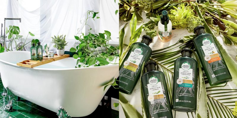 cover aloes herbal essences
