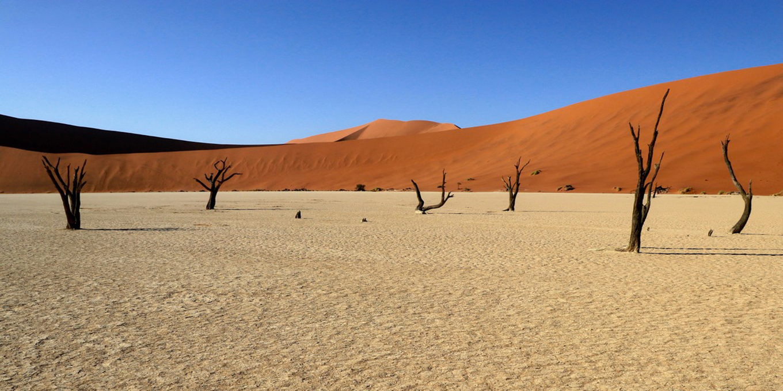namibie-gary-lawrence-1