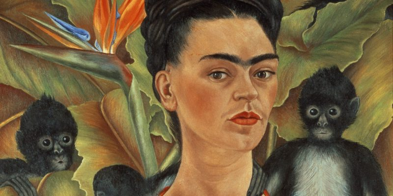 BONjanvier-2020-Kahlo_SPMonkeys_C.2.1