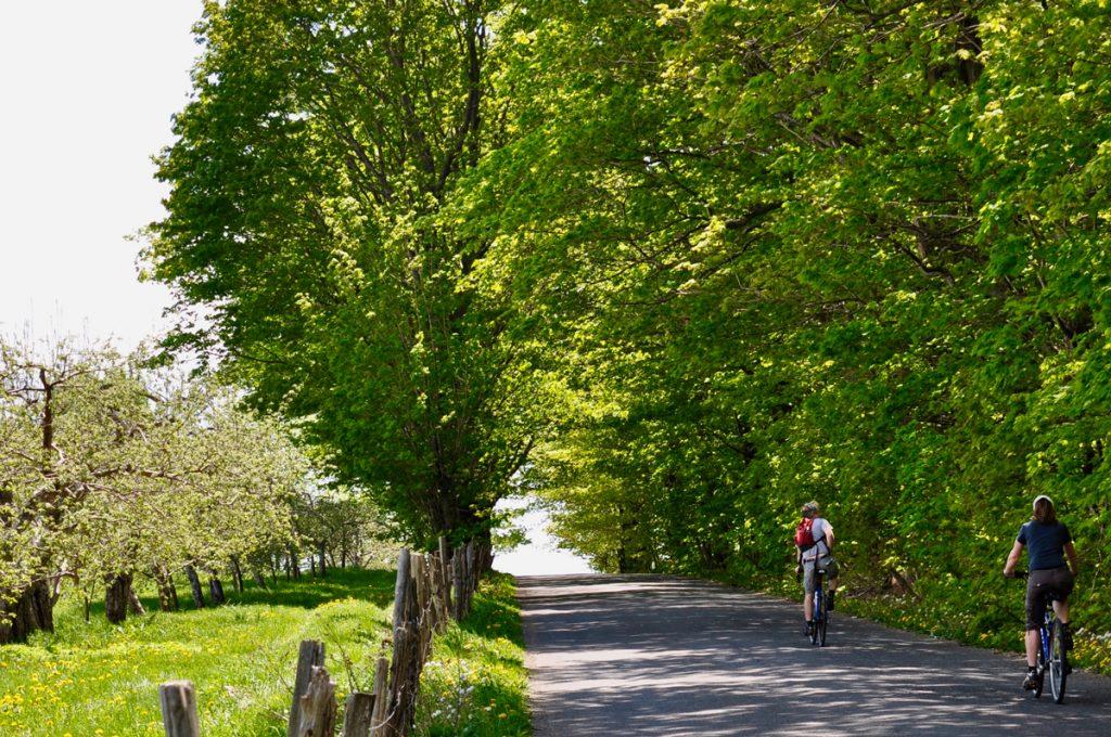 Vélo sur la route du Mitan