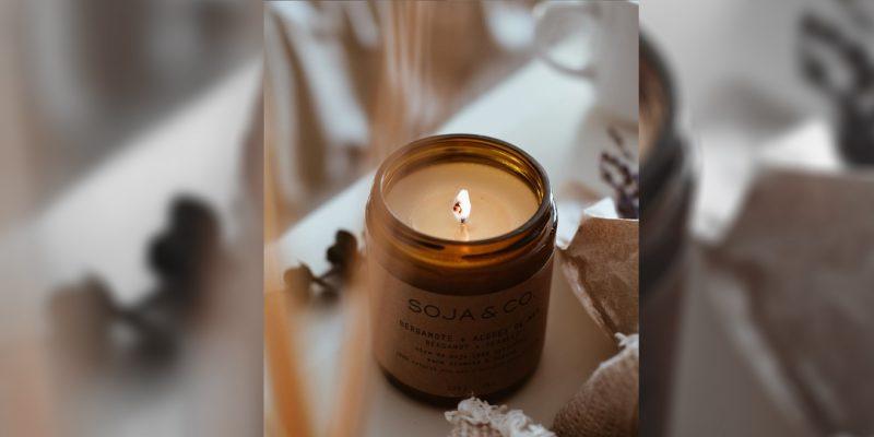 La compagnie québécoise de bougies Soja&Co aide à planter des arbres au Canada