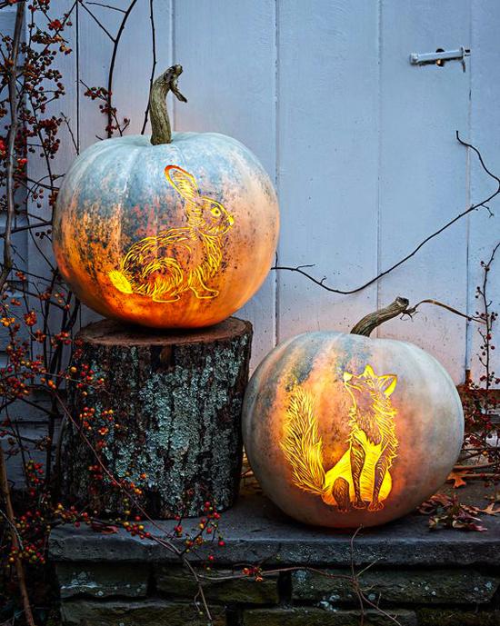 Comment sculpter une citrouille pour Halloween ?