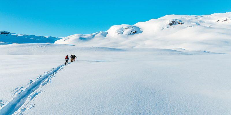 le-ski-de-randonnee-decryptage