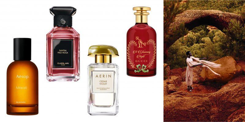 EQ377-WEBSITE_Parfums